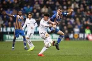 Prediksi Skor Wolverhampton vs Shrewsbury 6 Februari 2019
